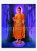 Buddha Big Poster 17x22 Inches