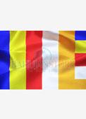 Panchsheel Flag 14 x 21 inches